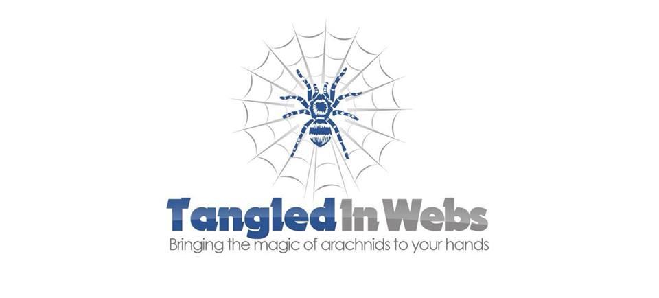 Tangled In Webs